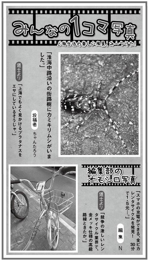 635投稿!読ホウ王国-3