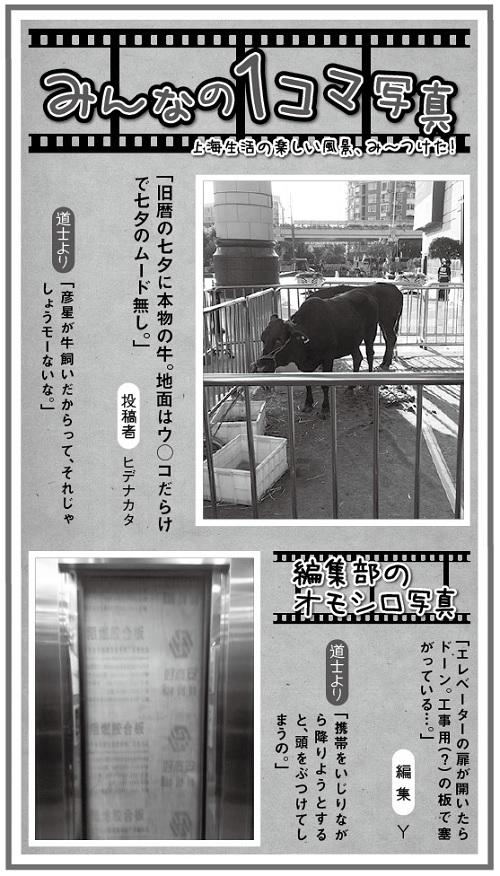 645投稿!読ホウ王国-3