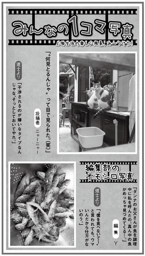 681投稿!読ホウ王国-3
